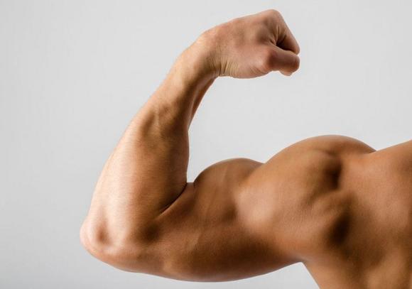 [건강상식] 운동 직후 펌핑된 몸 왜 금방 다시 빠질까?