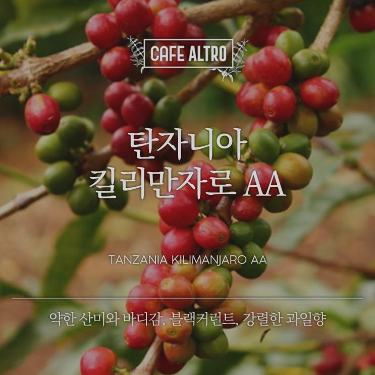 탄자니아 커피 종류와 특징의 모든것!!(킬리만자로(Killimanjaro, 탄자니아AA(Tanzania AA)), 모시(Moshi), 음베야(Mbeya))