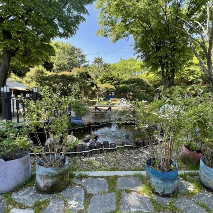 [군포/산본] 정원이 예쁜 가족 외식하기 좋은 맛집 추천 : 바다향 왕코다리 군포점
