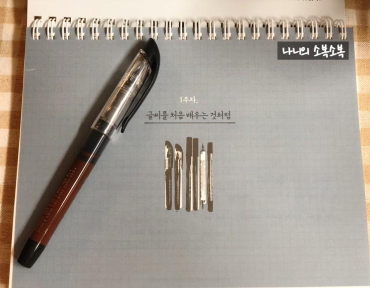 집순이의 새로운 취미생활 캘리그라피(캘리그래피)다이소 1000원 붓펜과 함께하다