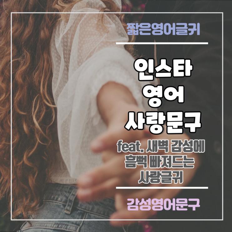 영어 글귀 :: 새벽 감성에 흠뻑 빠져드는 사랑 글 (feat. 갬성충만)