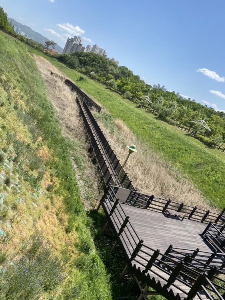 청주 근교드라이브 문암생태공원 산책로