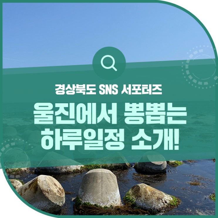 울진에서 이렇게 놀면 뽕뽑는거래요~! 울진 후포해변, 월송정 솔숲, 월송정, 울진수족관, 울진대게빵까지~!