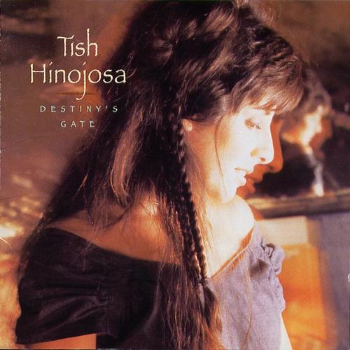 Noche sin estrellas (Night Without Stars) - Tish hinojosa / 가사 번역