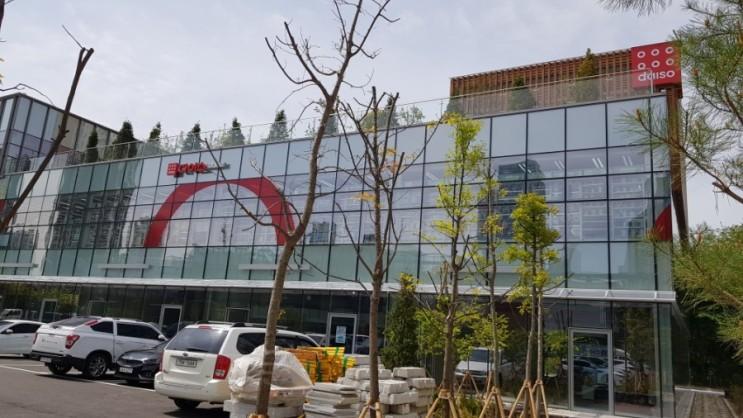송도3공구 다이소 인천대입구역점 오픈 첫 방문기