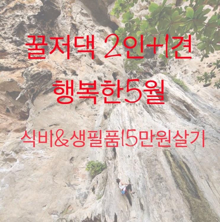 [가계부] 5/12 생활비 15만원살기