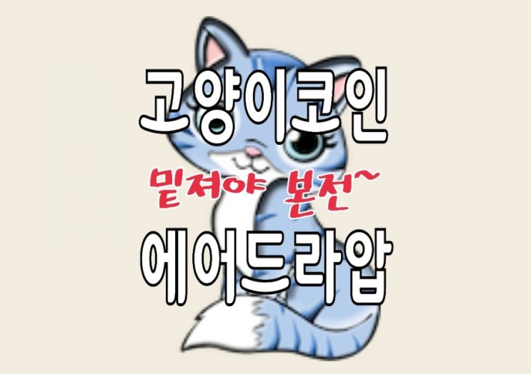 도지코인 VS 시바코인, 승자는 고양이코인? CATCOIN 에어드랍 정보