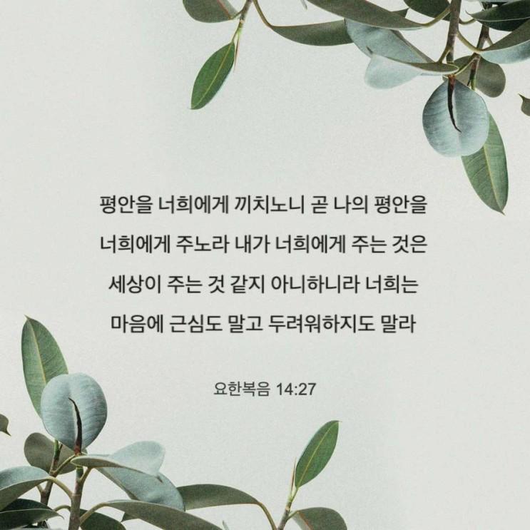 [새벽말씀]평안