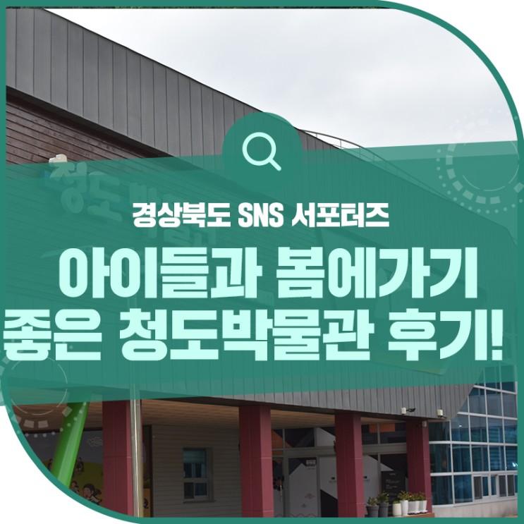 5월달 경북 청도 아이들과 가볼만한곳 추천!청도박물관에서 체험학습해요!
