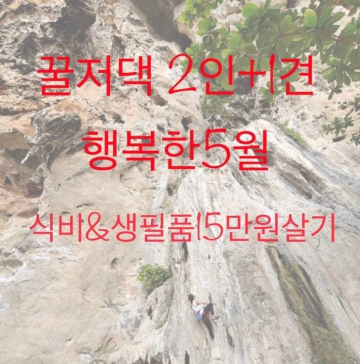 [가계부] 5/13 생활비 15만원살기