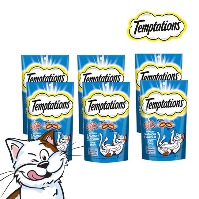 갓성비 좋은 한국마즈 마성의 고양이 간식 템테이션 85G 6종[태국산 무료배송], 담백한 연어맛 85G, 6팩 추천합니다