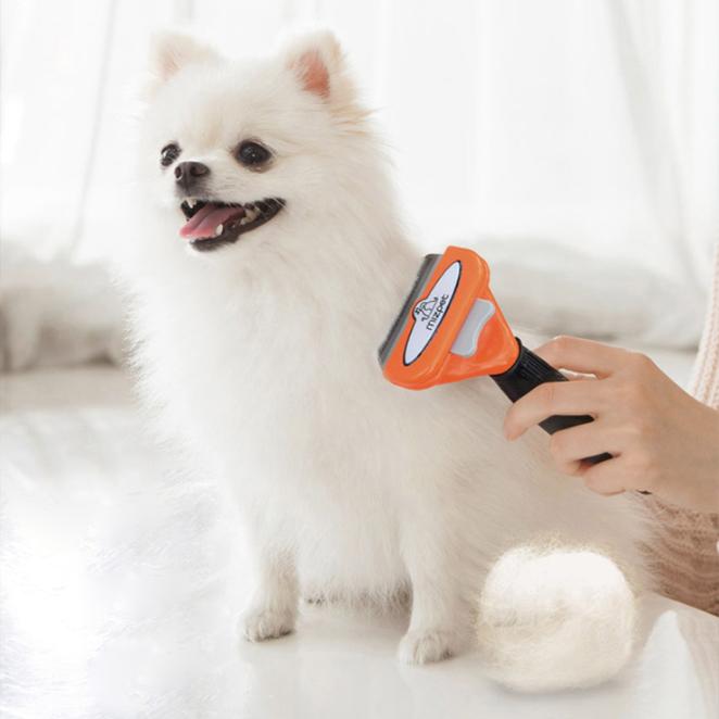 많이 찾는 미즈펫 강아지 죽은털 제거 브러쉬 장모용 6.7cm, 혼합 색상, 1개 추천합니다
