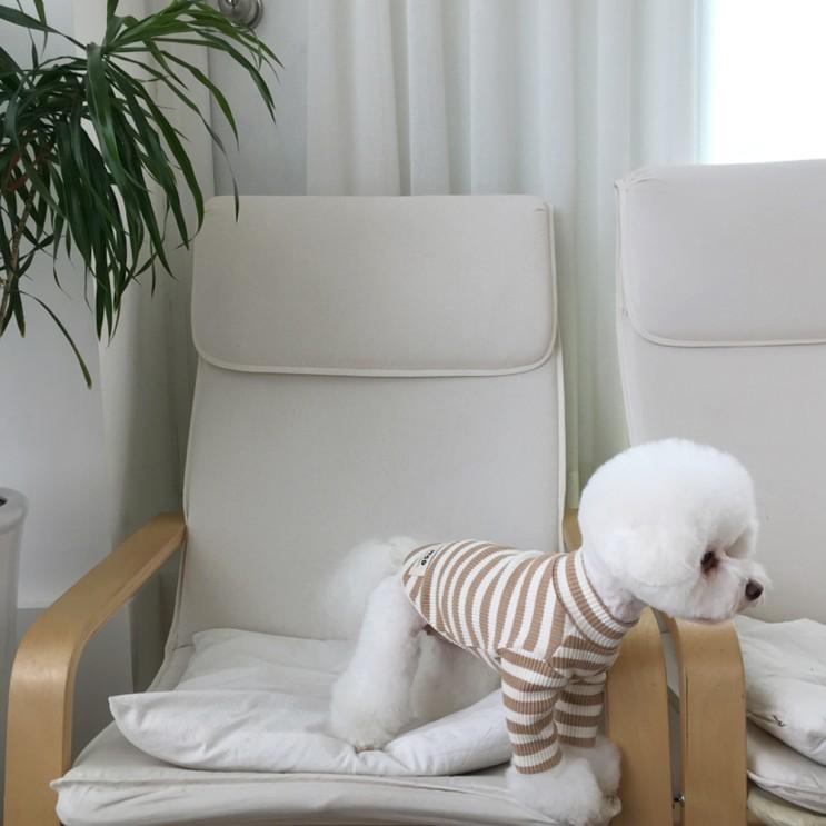 후기가 좋은 매그독 강아지 메이플 티셔츠, 베이지 ···