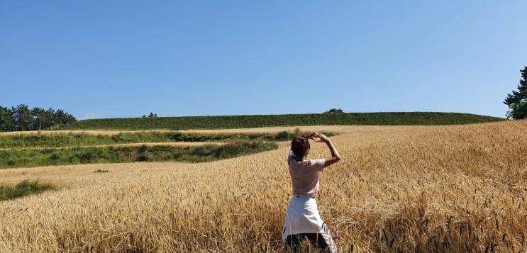 제주여행-6일차 제주 서쪽 해변과 시골마을이 어우러진 올레길 16코스