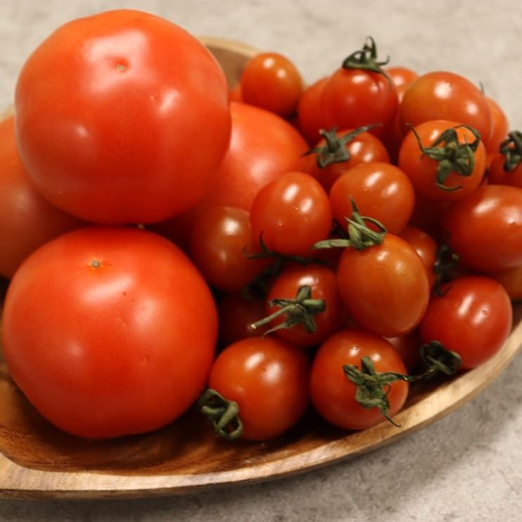 후기가 정말 좋은 [요빠] 스테비아 토마토 방울토마토 토망고 1kg, 방울샤인마토1kg 추천해요
