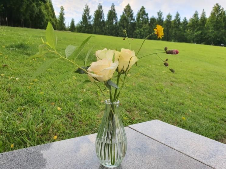 오창꽃집 플로스드르뽀렘 예쁜 꽃을 좋아하는 사람에게 선물하세요.