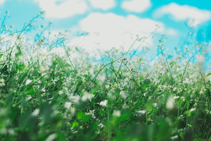 눈깜빡임은 틱 증상일까, 알레르기 비염/결막염 증상일까?
