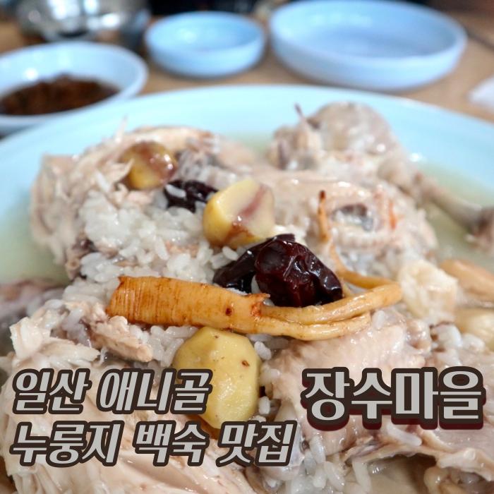 [고양 일산동구] 애니골 누룽지백숙 맛집 :: '장수마을'