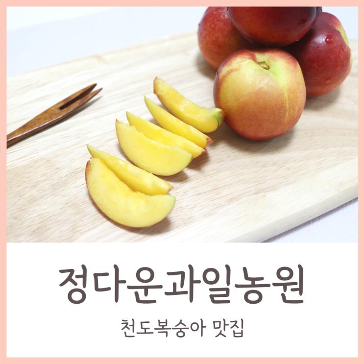 정다운과일농원에는 신선과일 많아요! 맛있는과일 천도복숭아 후기