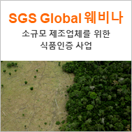 [SGS 글로벌] Recognition for small suppliers - Global Market Solutions