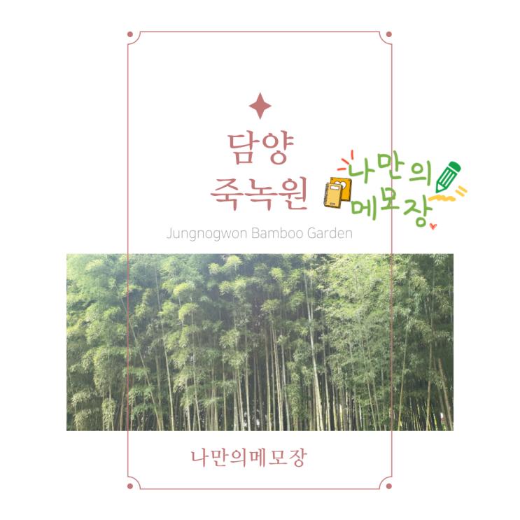 담양의 최고 힐링 포인트 죽녹원에 방문하다
