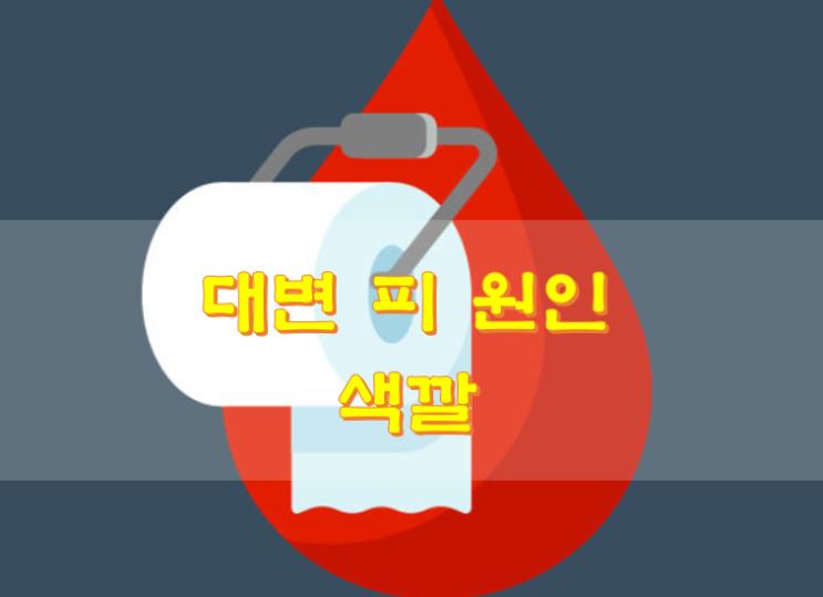 대변 피 원인 색깔