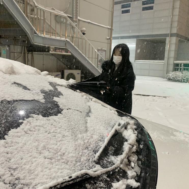 눈 오는날 운전 포기하고 집밥 먹부림!