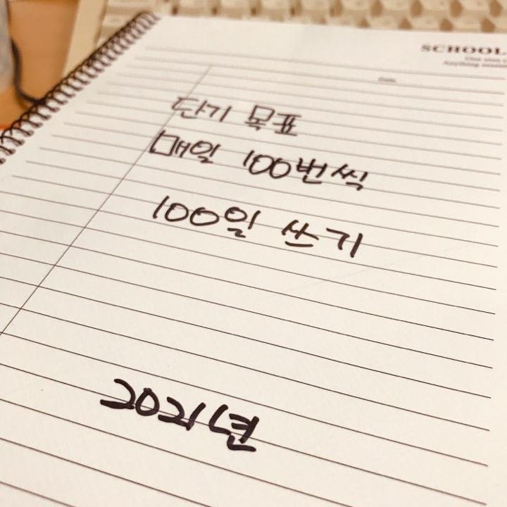 R=VD 꿈을 현실로 만드는 공식, 매일 100번씩 100일 쓰기 (2021년)