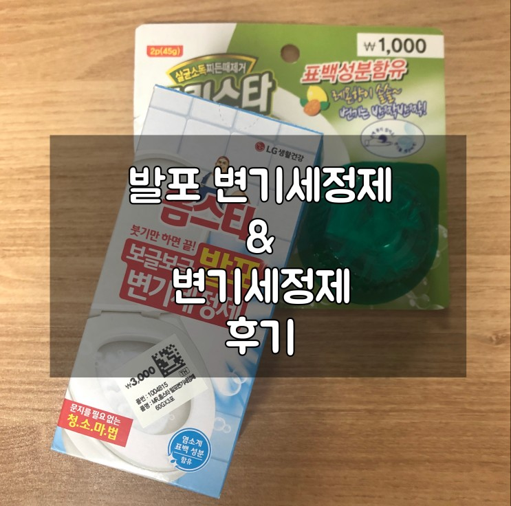 다이소 발포변기세정제 & 변기세정제 후기
