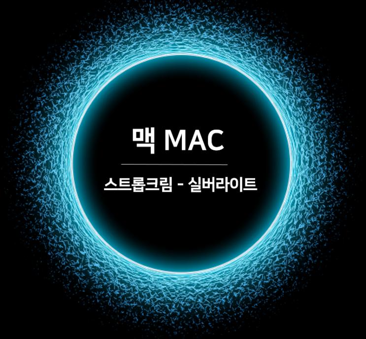 맥 MAC 스트롭크림 실버라이트 수분크림 겸 메이크업베이스로 광채피부 연출하고 싶을때?