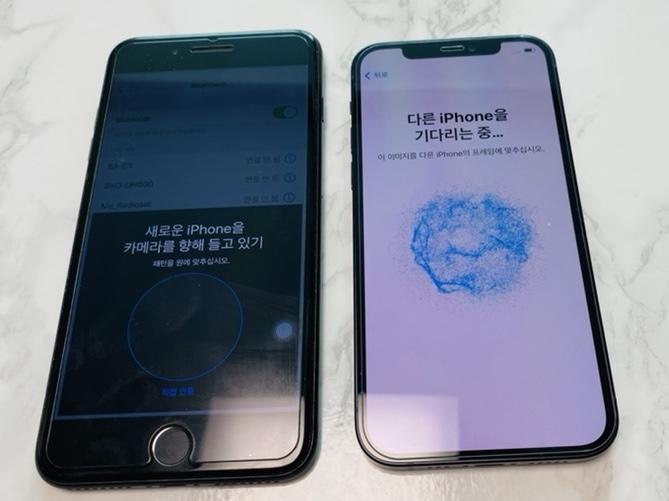 기알못이 아이폰에서 아이폰12로 데이터 옮기기-마이그레이션, 카톡포함
