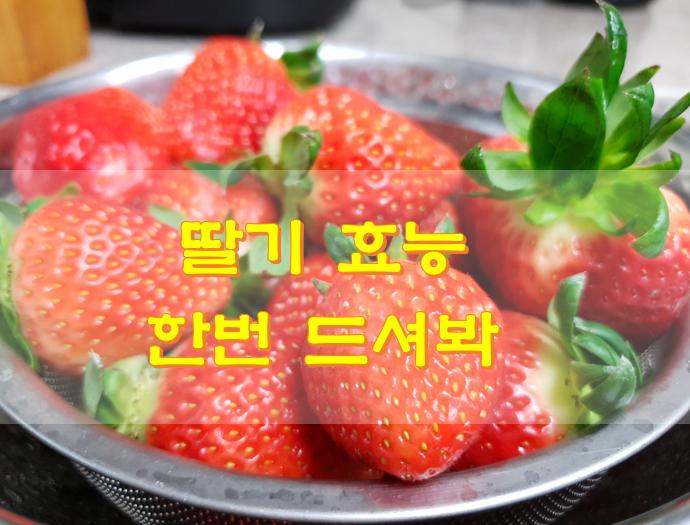 딸기 효능 몸에 좋아요