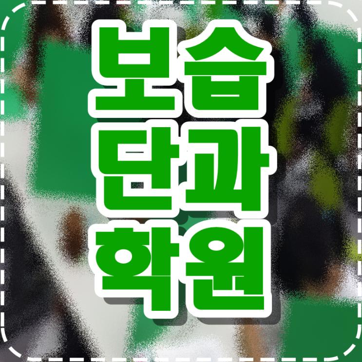 강릉 종합학원 포남동 옥천동 영어학원 공부방 과외 내신 단과반 학습도우미