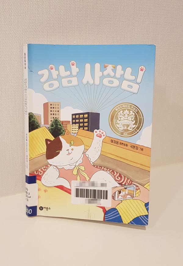 초등학생 책읽기-강남사장님  이지음 글, 국민지 그림