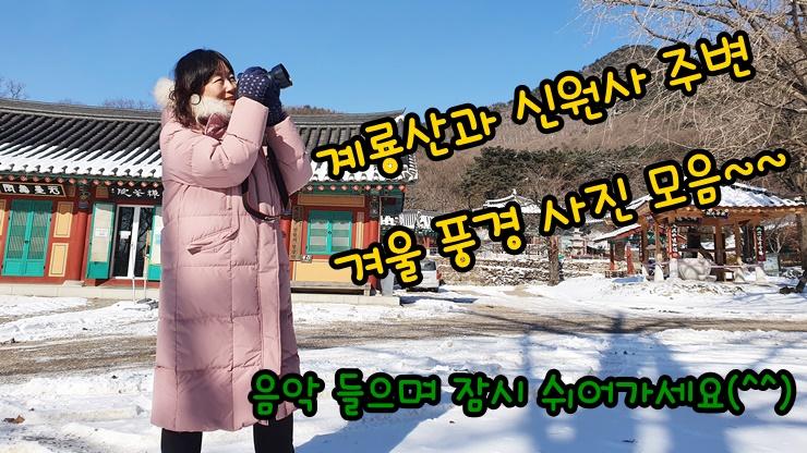 계룡산 신원사 주변 겨울 풍경 영상(ft. 동네 산책)