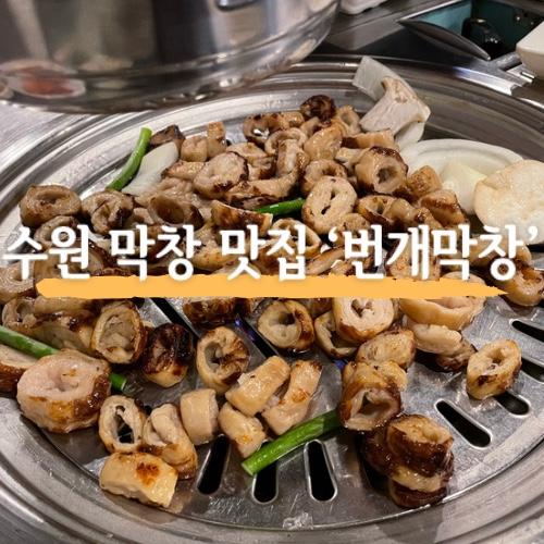 [ 수원 막창 맛집 ] 번개막창 | 권선동 근처 막창전문점 너무 맛있었던 후기 !!