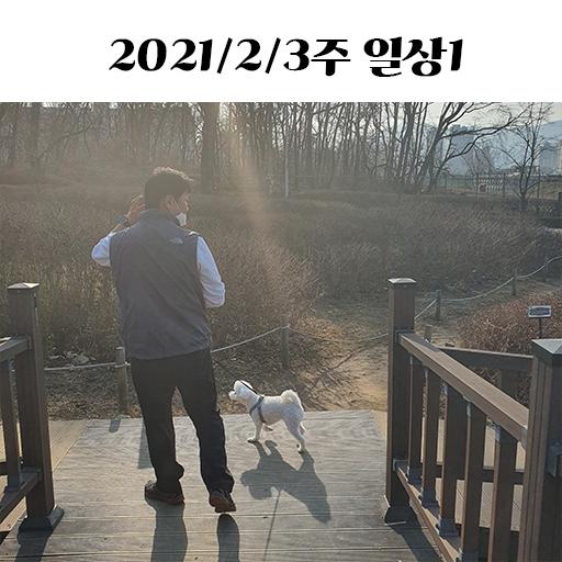 2월 3째주 일상1   아빠와 러피산책/초코칩쿠키/도미노 블랙타이거쉬림프