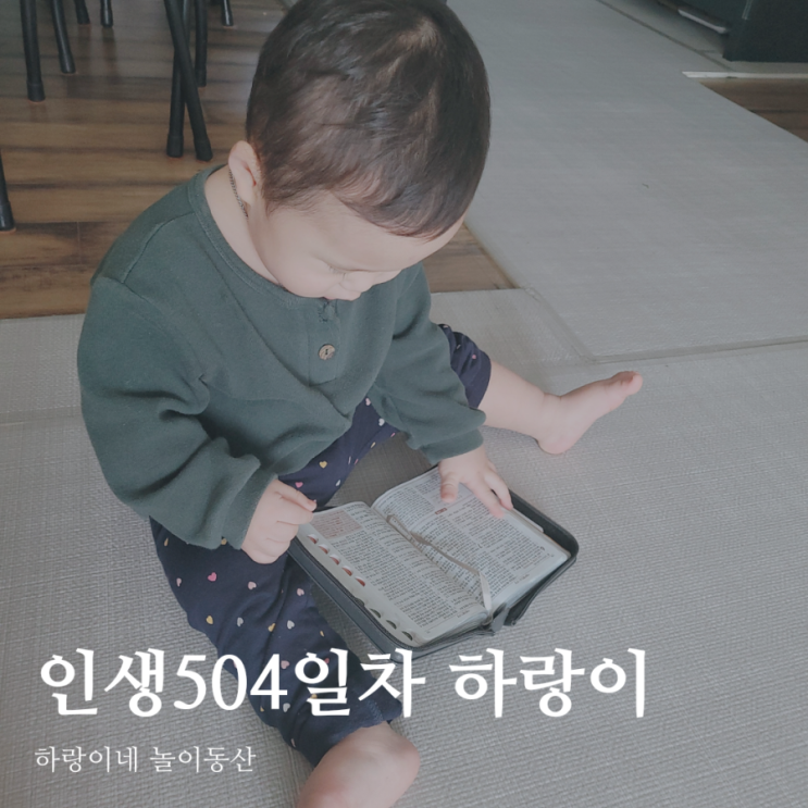 인생504일차 아들 육아일기, 16개월 성장발달