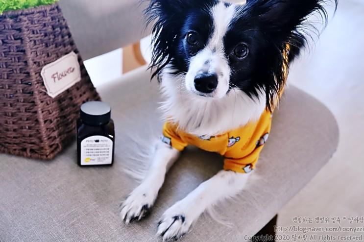 강아지 노즈워크 간식으로 좋은 강아지관절영양제 페토페토 관절룰루