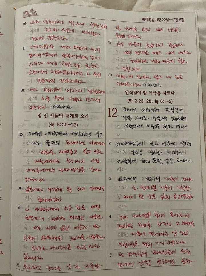 [성경필사]마태복음 11장22절~12장 21절