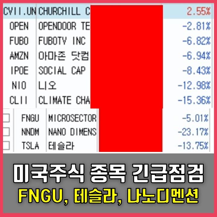 미국 주식 보유 종목 긴급 점검 2탄 : 테슬라(TSLA), FNGU, 나노디멘션(NNDM), 니오(NIO)