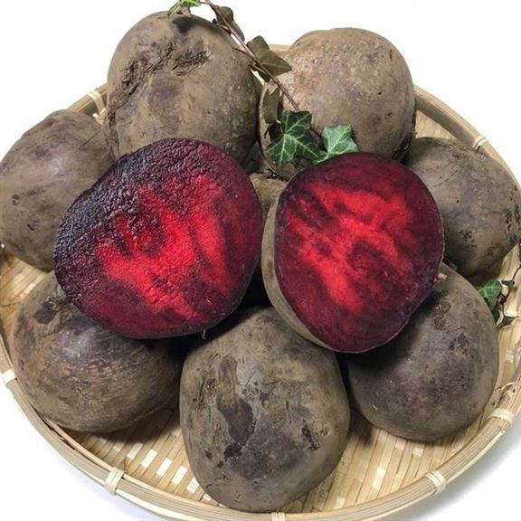 [할인상품] 야채마루 레드비트 7,900 원✌︎ ♪