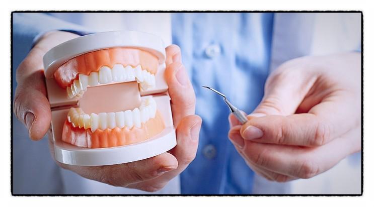 평촌 치과, 과잉진료 피하는 TIP