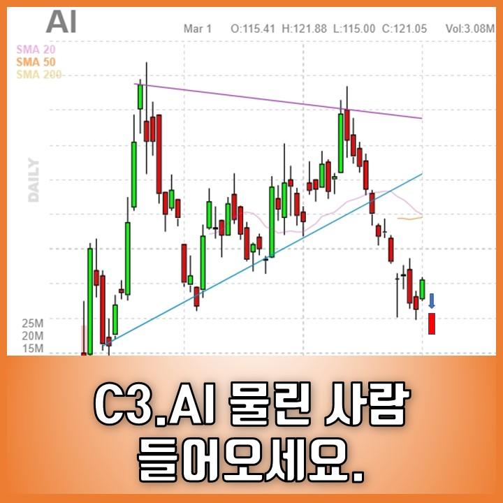 C3.AI(티커 : AI) 실적 발표 후 실망 매물 주가 급락 | 손절 이유