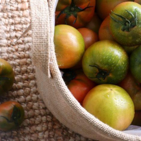 [할인정보] 농대오빠 대저 짭짤이 토마토 2.5kg 30,900 원♩♪ 11% 할인✌︎