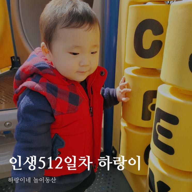 인생512일차 아들 육아일기, 17개월 성장발달