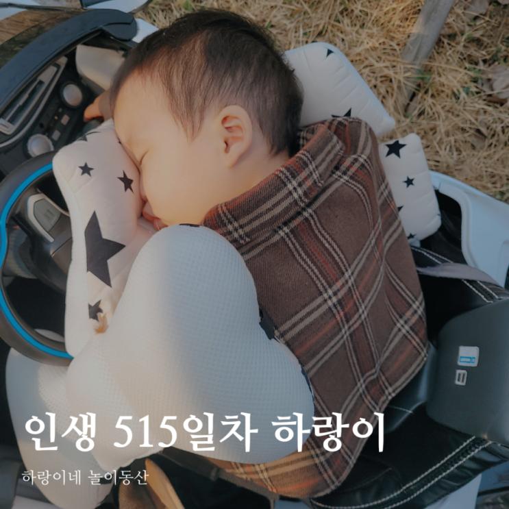 인생515일차 아들 육아일기, 17개월 성장발달