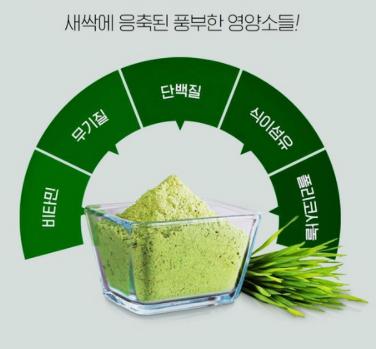 초록 슈퍼푸드_새싹보리 효능