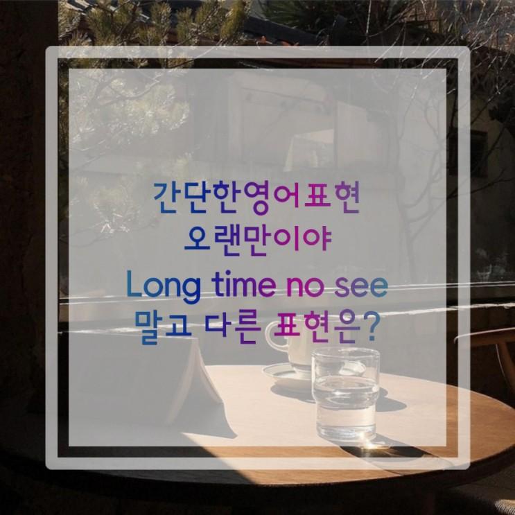 간단한영어표현:오랜만이야:Long time no see말고 다른 표현은?