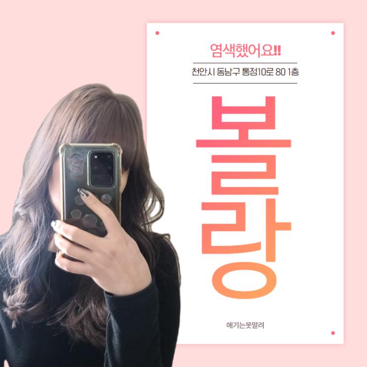천안 신부동미용실 '볼랑'에서 애쉬염색한 후기!